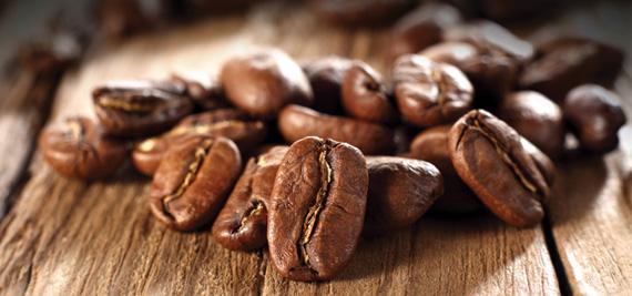 ประวัติกาแฟสายพันธุ์อาราบิก้าไทย